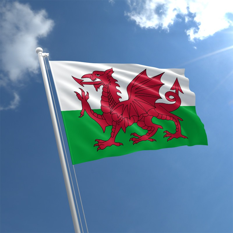 Welsh Flag.jpg
