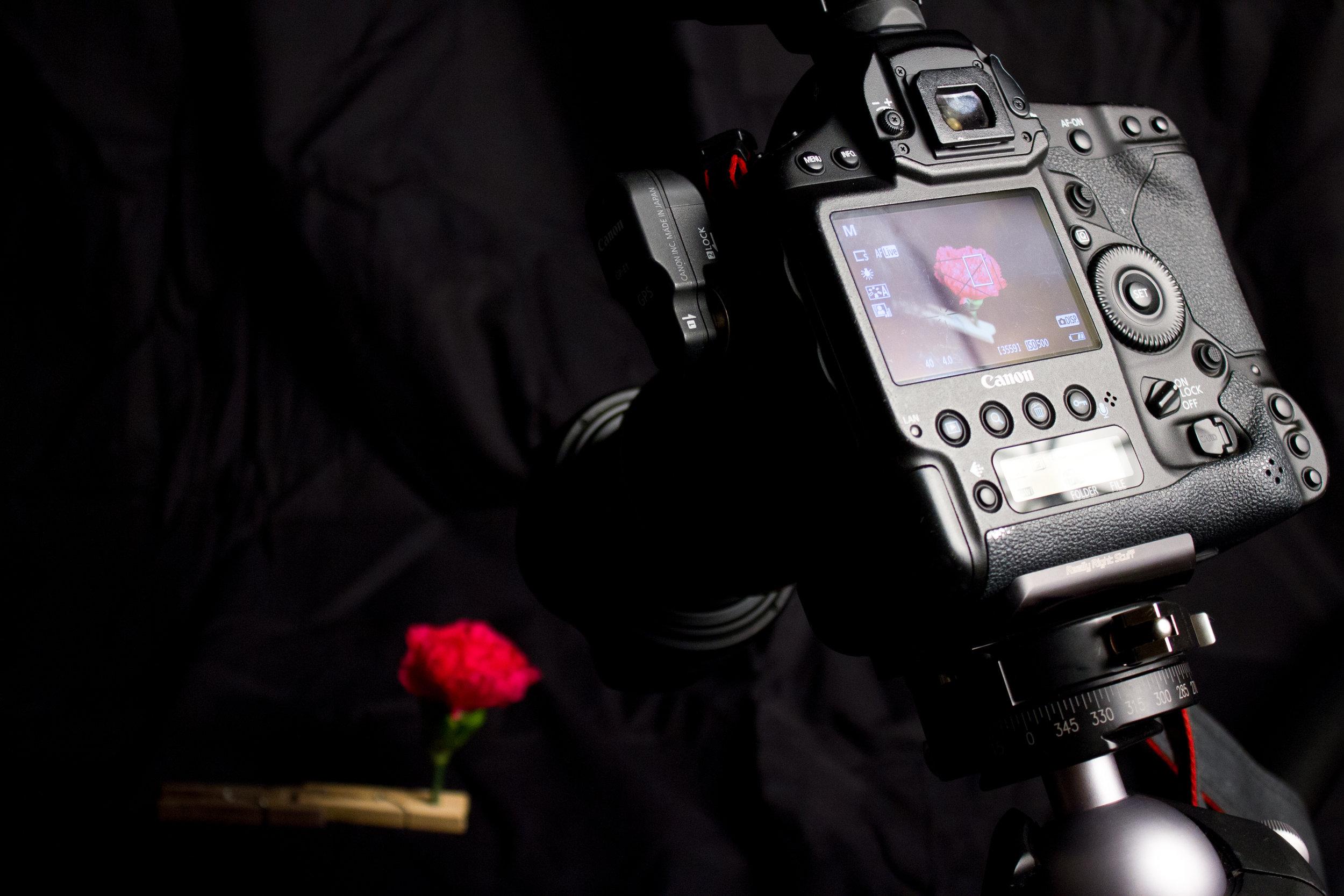 Digital Photo Project 1-8