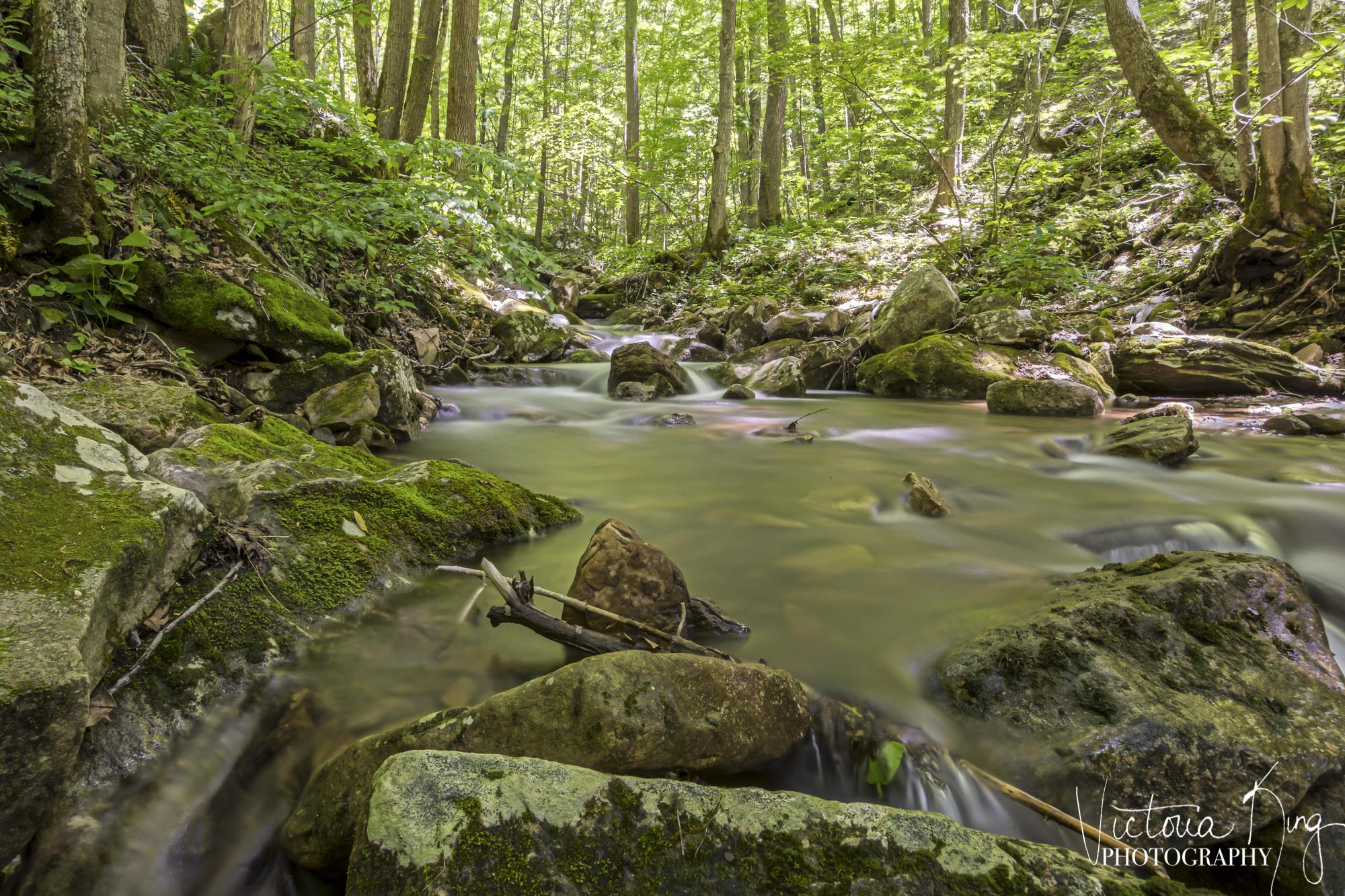 Mountain Stream-2