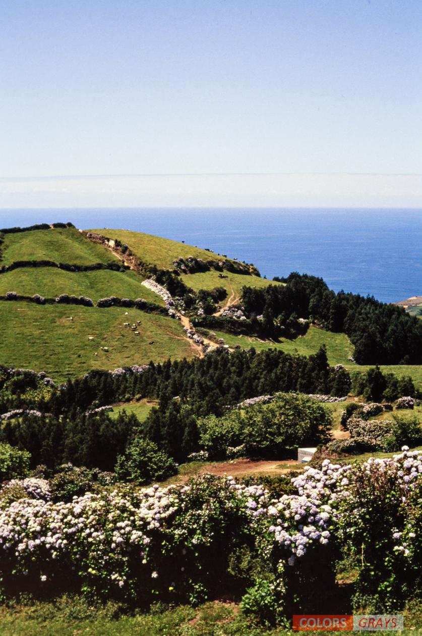 7-Azores_CG.jpg