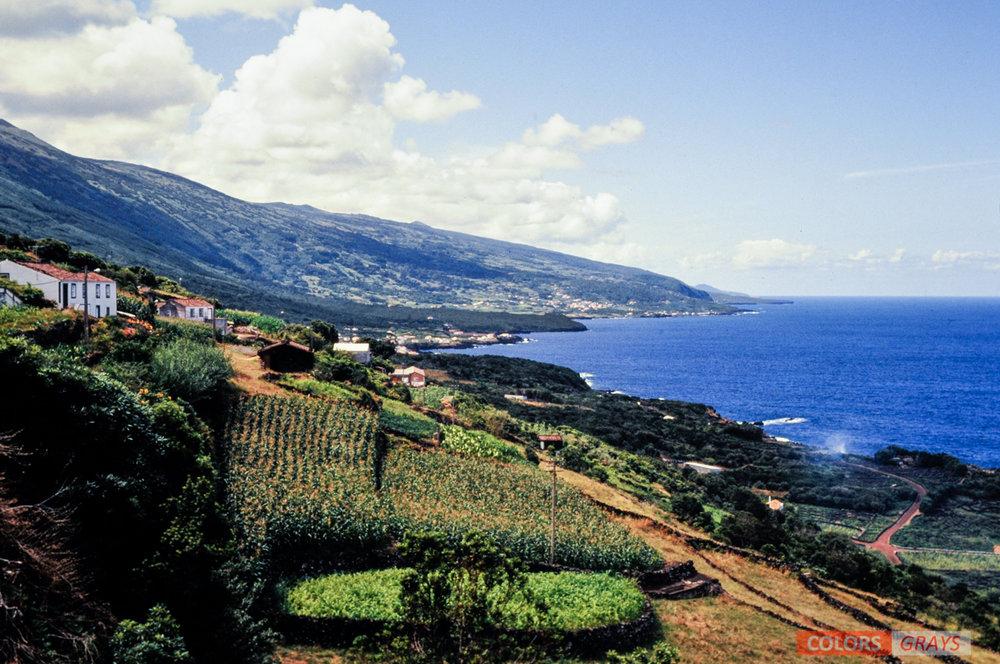 88-Azores_CG.jpg