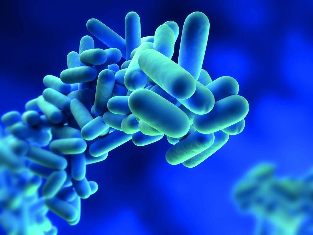 Legionella & Water Hygiene - Risk Assessments & Control Programmes