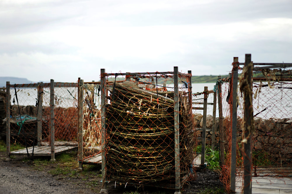 Oyster Cage 01.jpg
