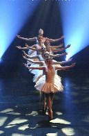 costume_ballet.jpg