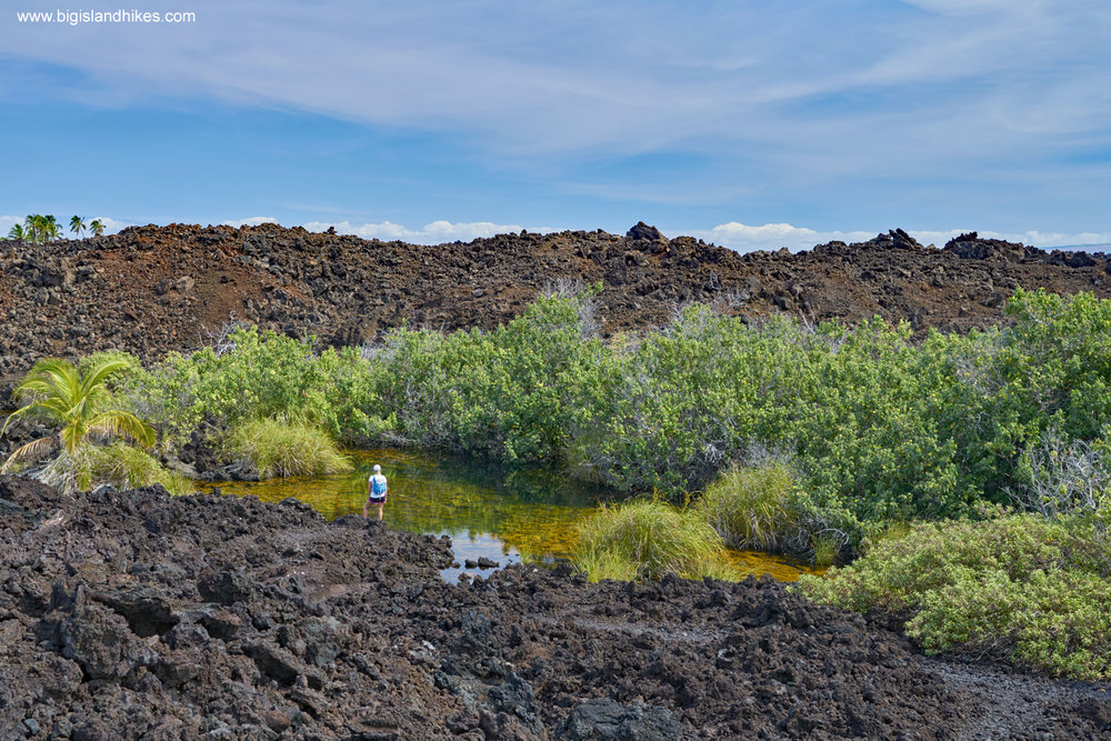 The Golden Pools of Keawaiki