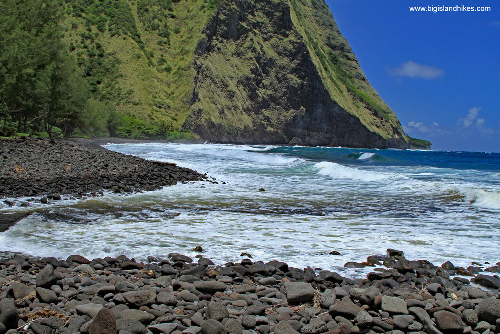 Waimanu Valley Beach