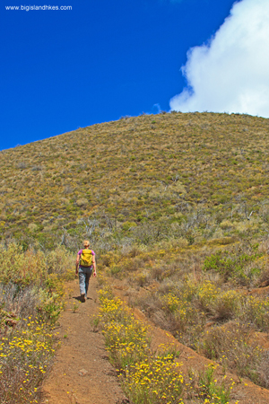 Climbing Pu'u Ahumoa