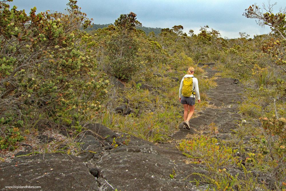 kaumana trail hiking.jpg