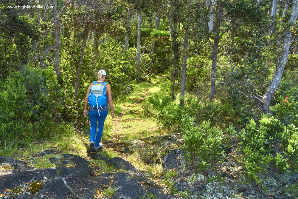 Puʻu ʻŌʻō Trail