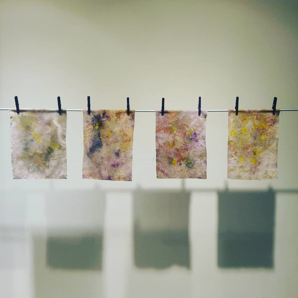 Naturally dyed fabric by young artists from The Cottage Preschool at Fiberspace Gallery