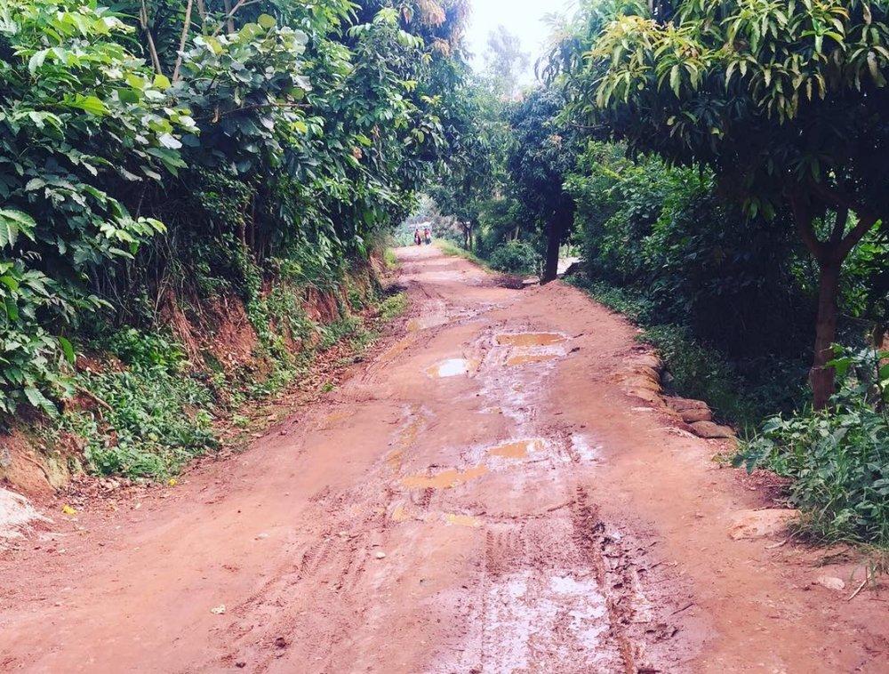 #SundayWalkRwanda it's been rainy the last few days!