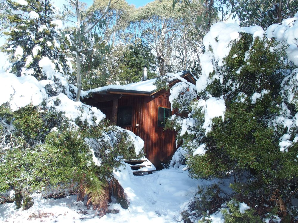 Cradle Mountain Highlanders - Marsupial Studio Cabin - Gas Fire