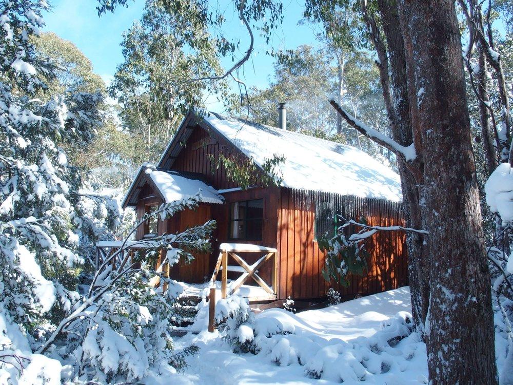 Cradle Mountain Highlanders - Telopea Spa Cabin