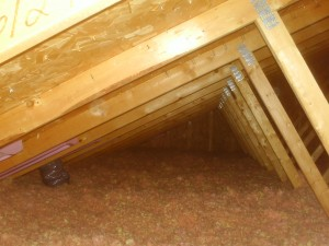 Home inspectors picture of attic insulation
