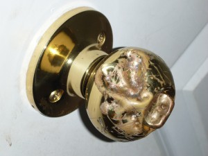 Pit Bulls Attack Door Knob