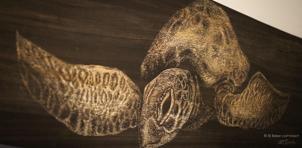 Be Free  Turtle Alaia Detail