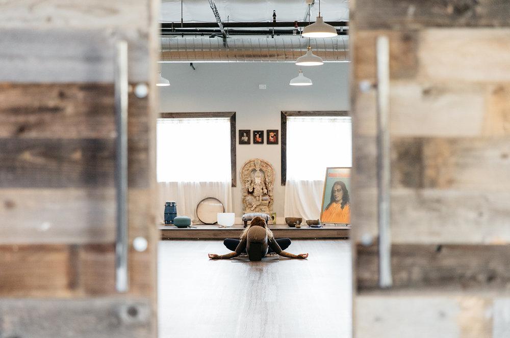 Yoga Sapien 3.jpg