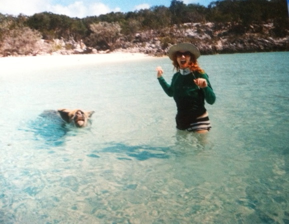 Swimming with pigs in Exuma, Bahamas.