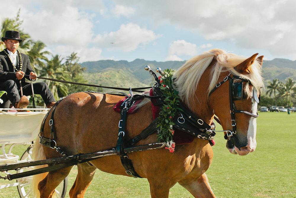 Hawaii Polo Club Wedding - CEREMONY_39.jpg