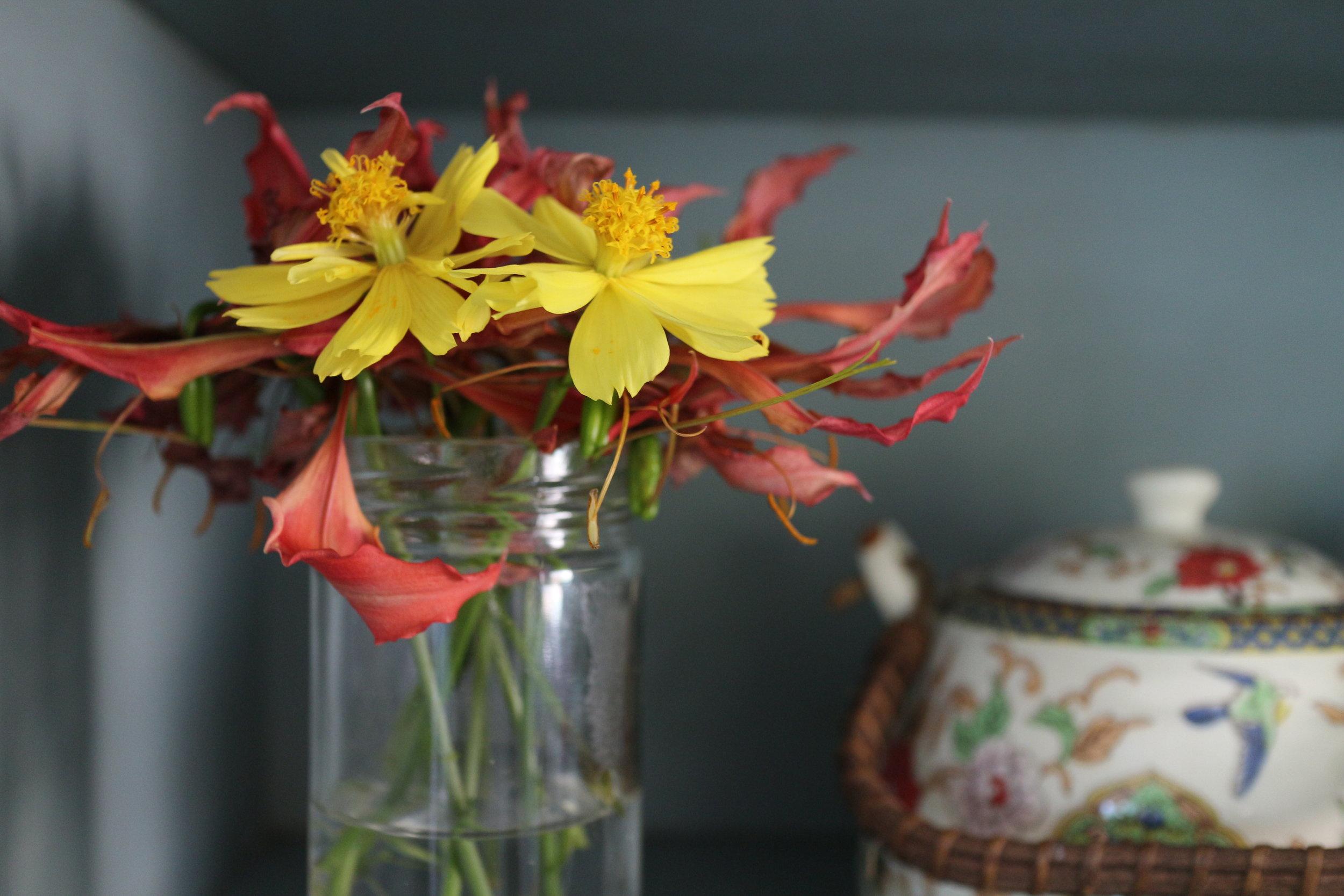 flowers2_january cure