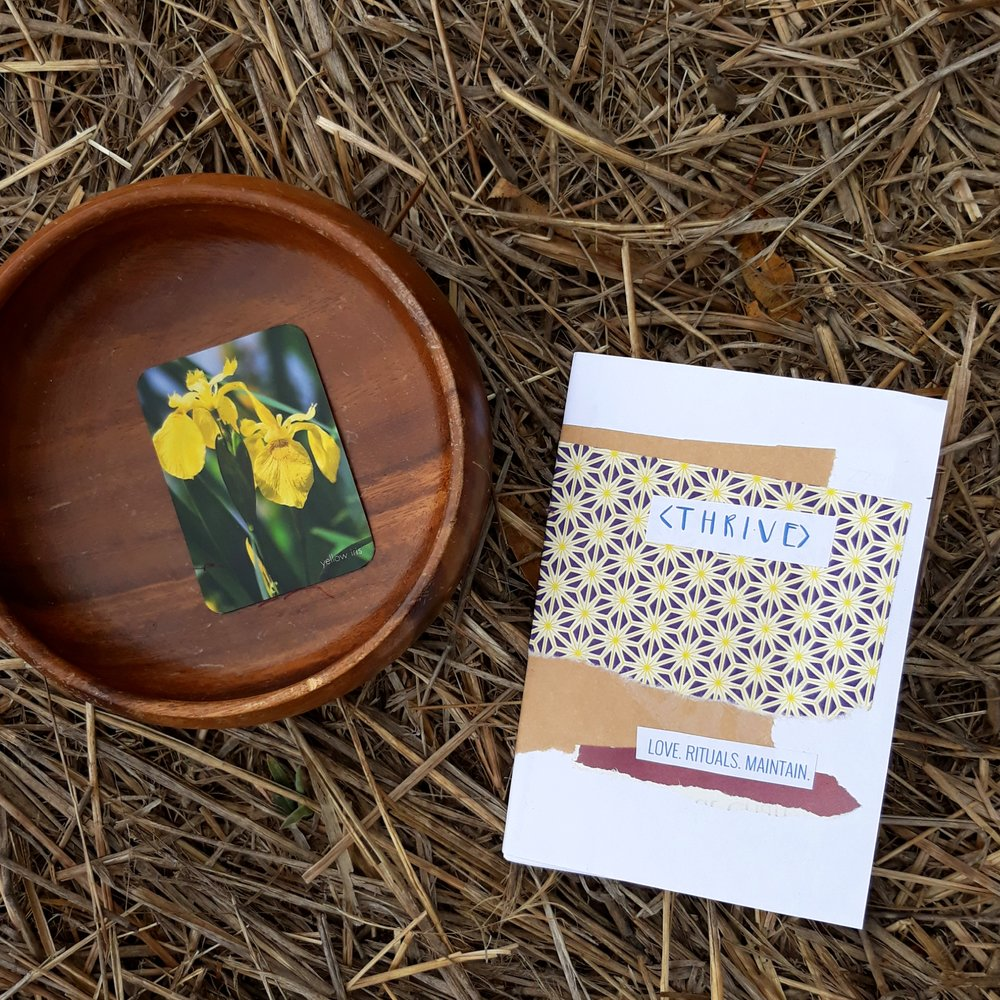 - Zine JournalsA series of 7 mini journals to explore the 7 Principles of Interior Alchemy.