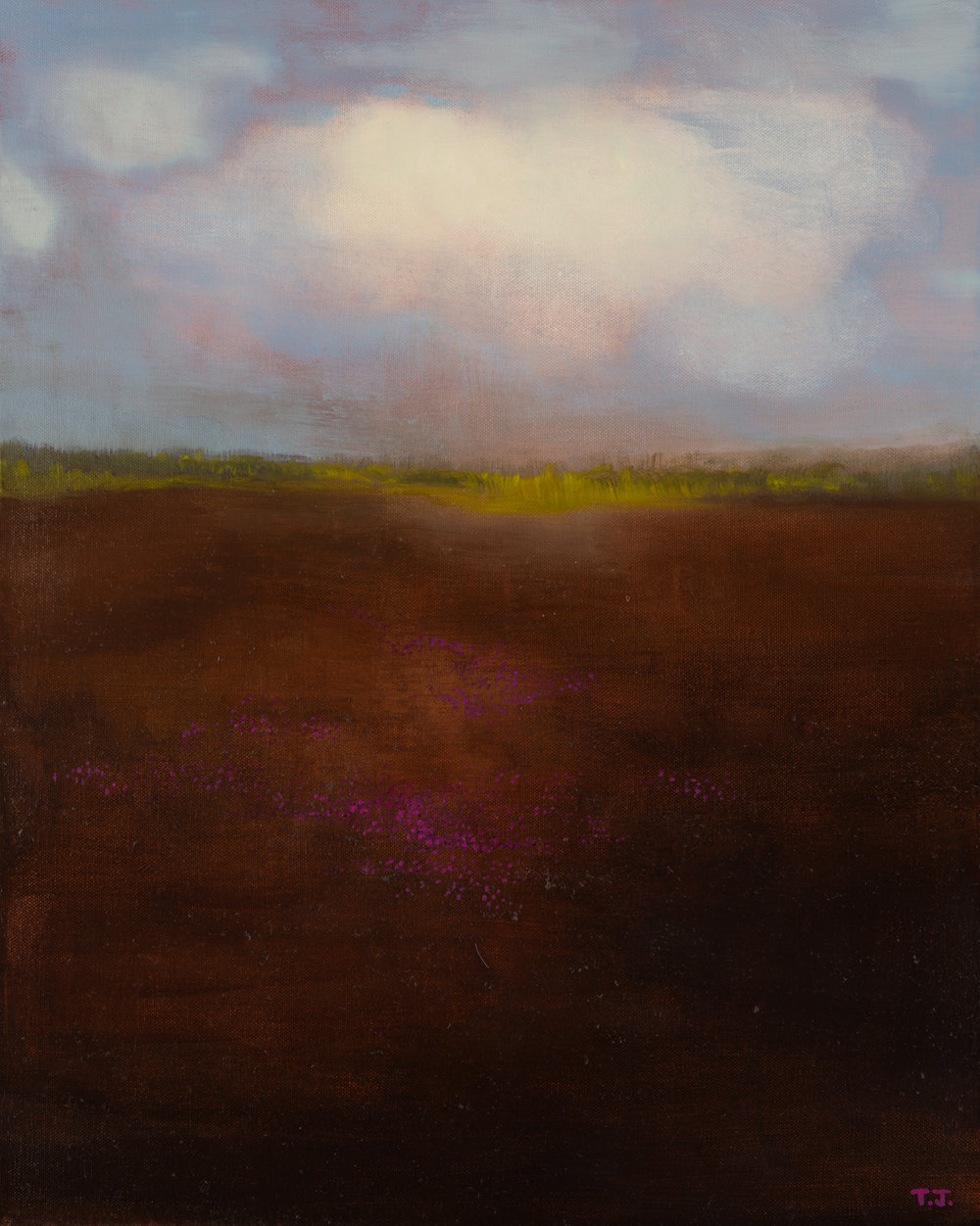 Teresa Jarzynski - Lavendar Fields - 16 x 20 -Oil on canvas