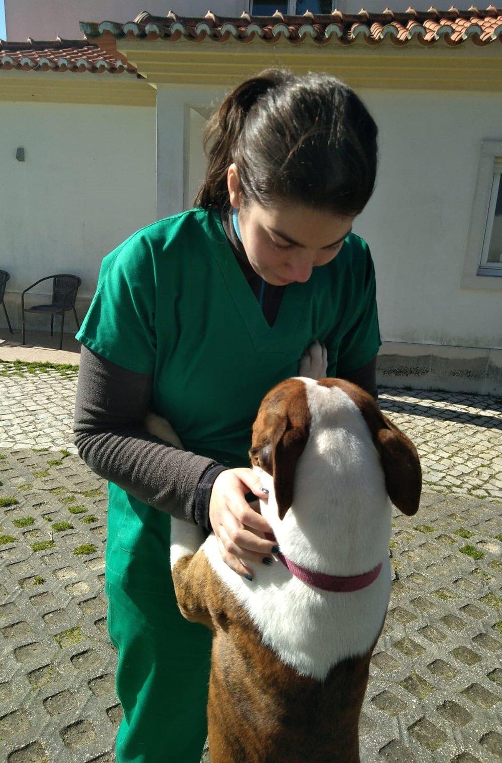 veterinariosintra_domicilio1.jpg