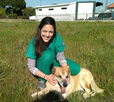 veterinariosintra_domicilioscolari4.jpg
