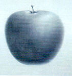 Paintings and Apple Peel mobile for Glaxo SmithKline  (UK)