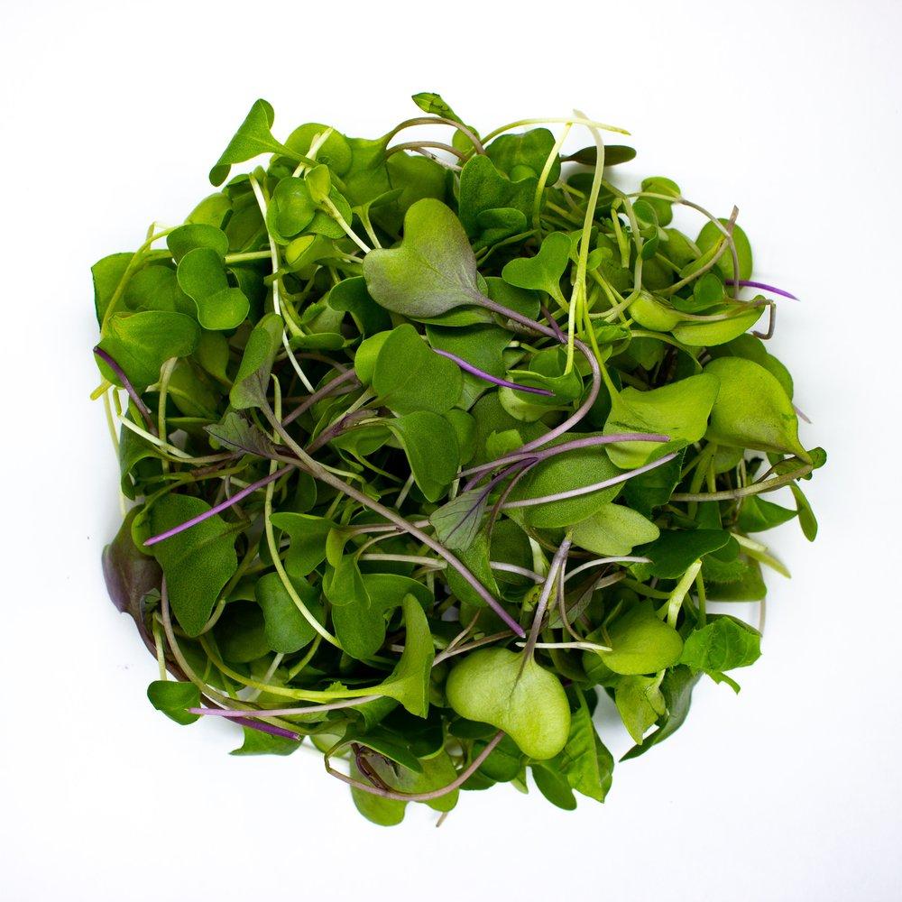 Broccoli + Kale