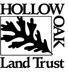 hollow-oak.png