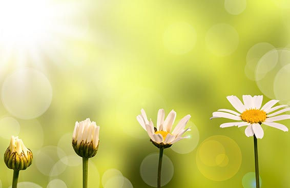 spiritual-growth-articles.jpg