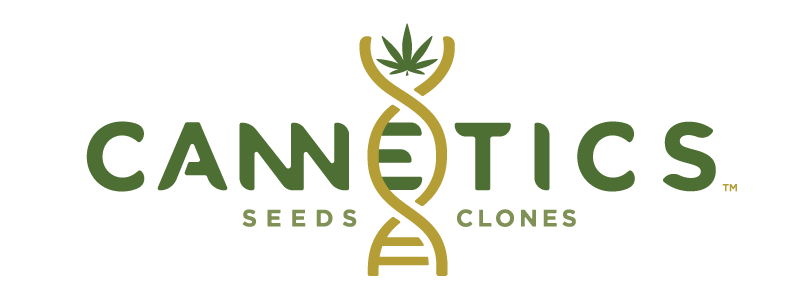 Cannetics – Seeds & Clones for industrial hemp