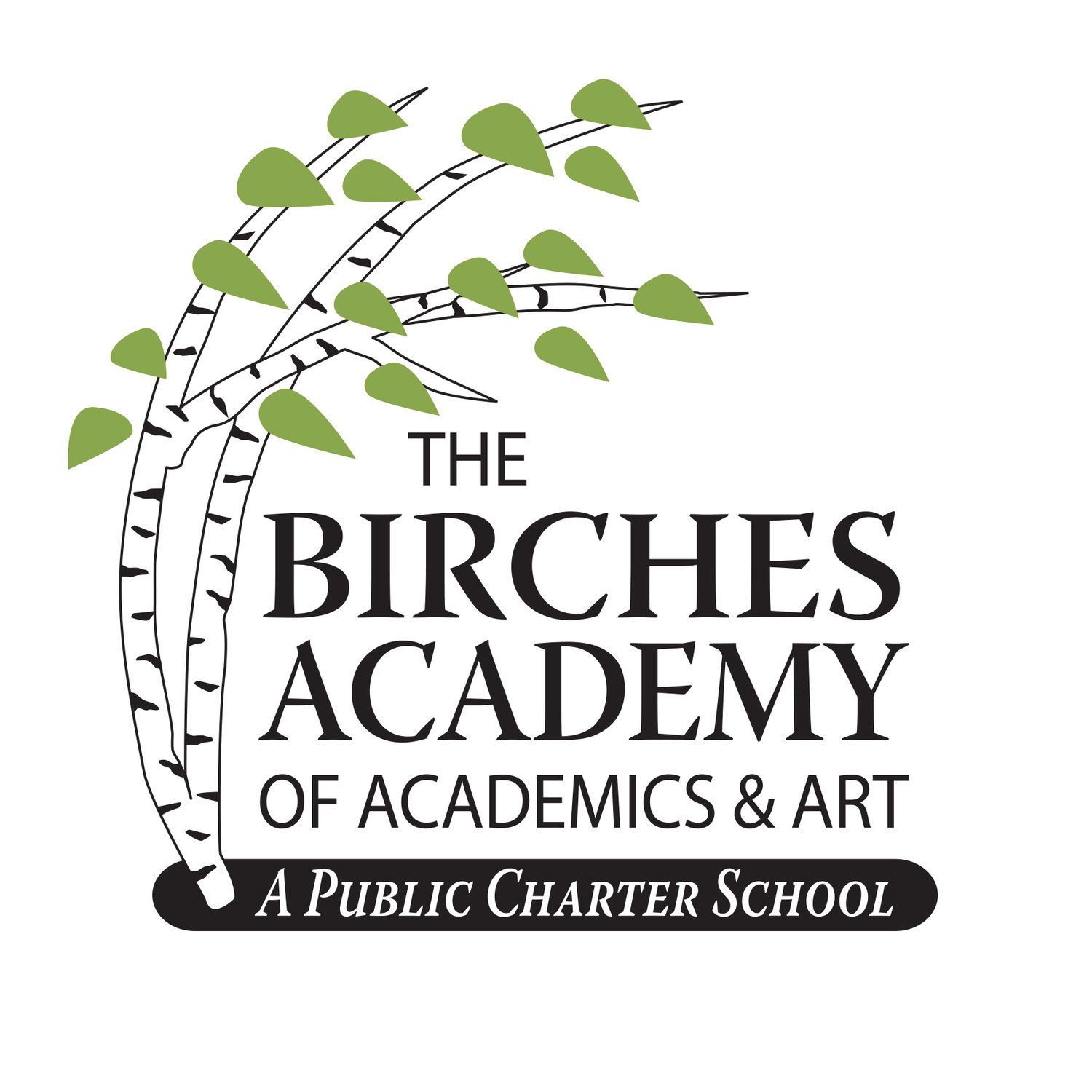 The Birches Academy of Academics and Art