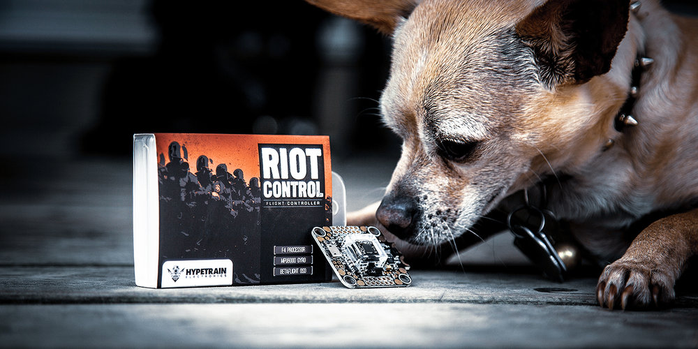 riot control.jpg