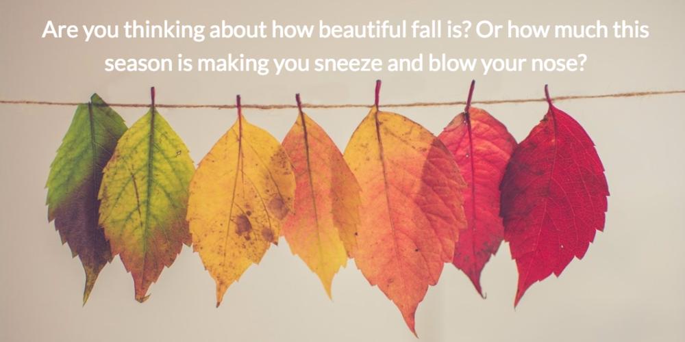 Fall_GA.png