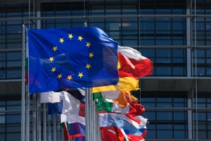EU Flags photo