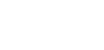 Parent Partners Plus