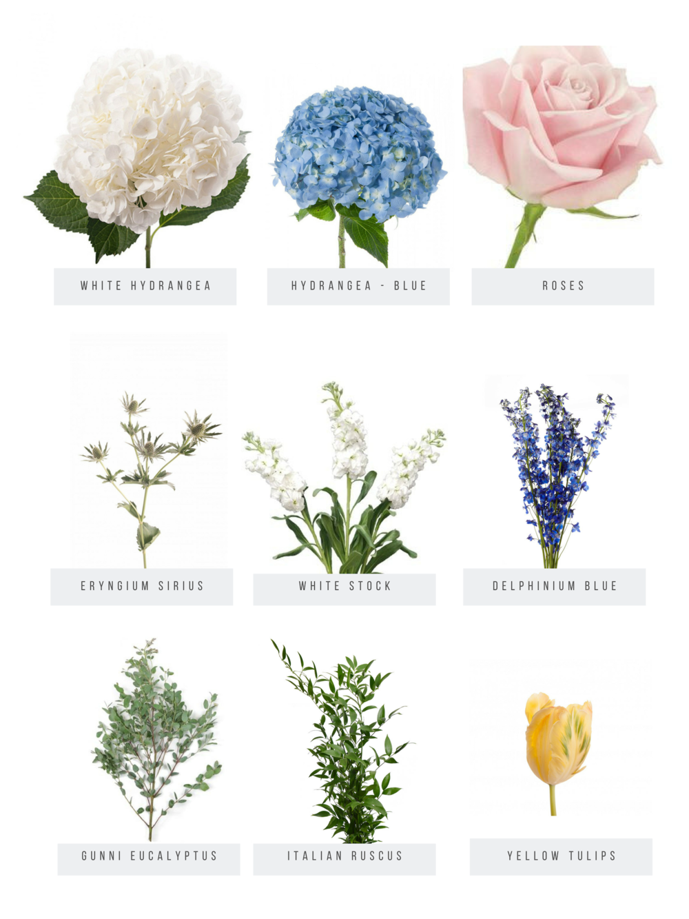 Flower Preview_Mercantile.png
