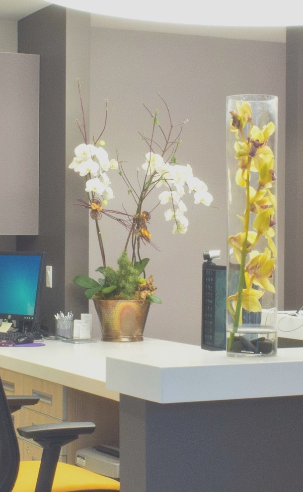 The entire office is decorated in soothing colors with beautiful flower arrangements