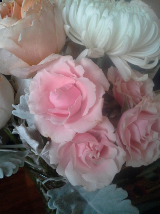 Pink Majolica spray roses