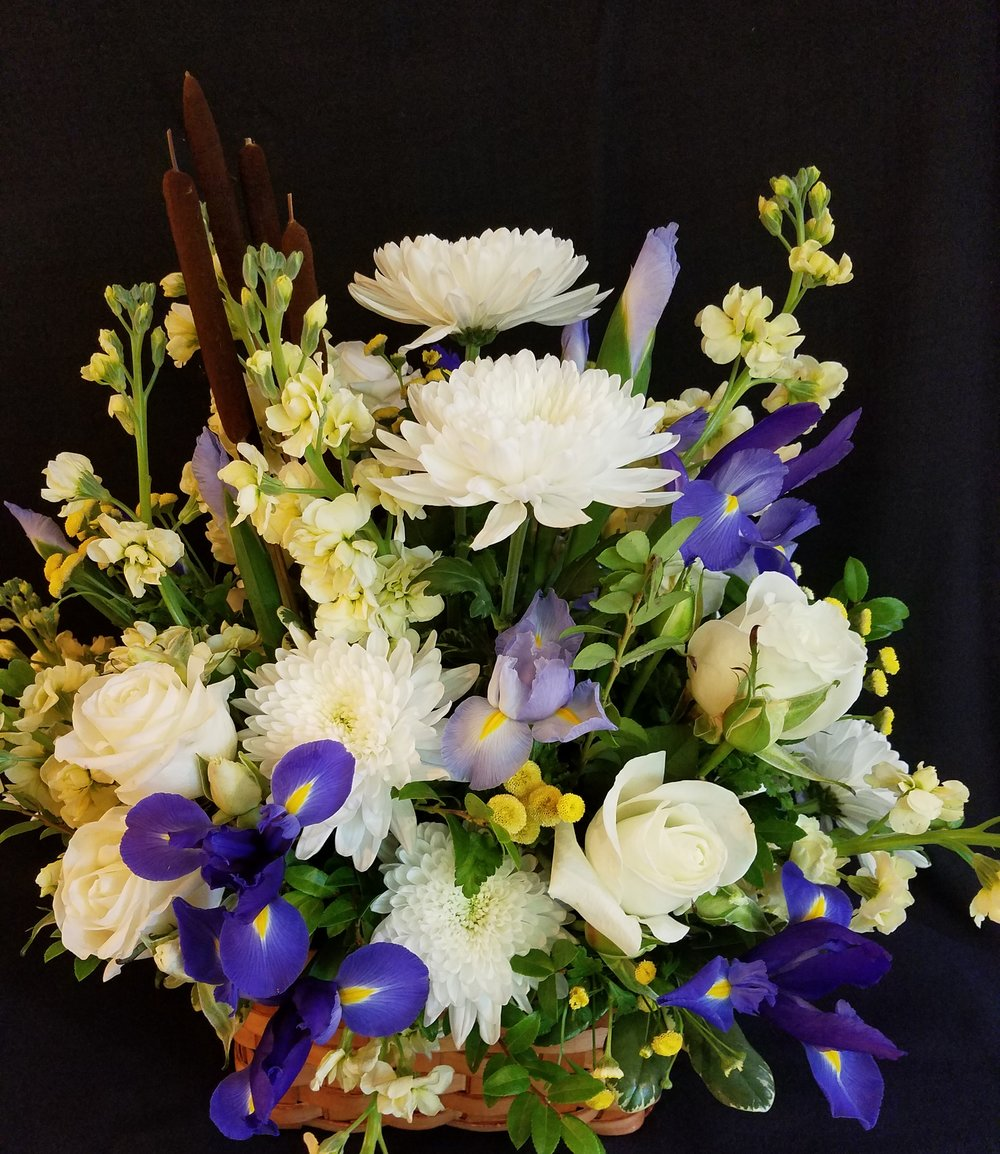 Iris sympathy arrangement