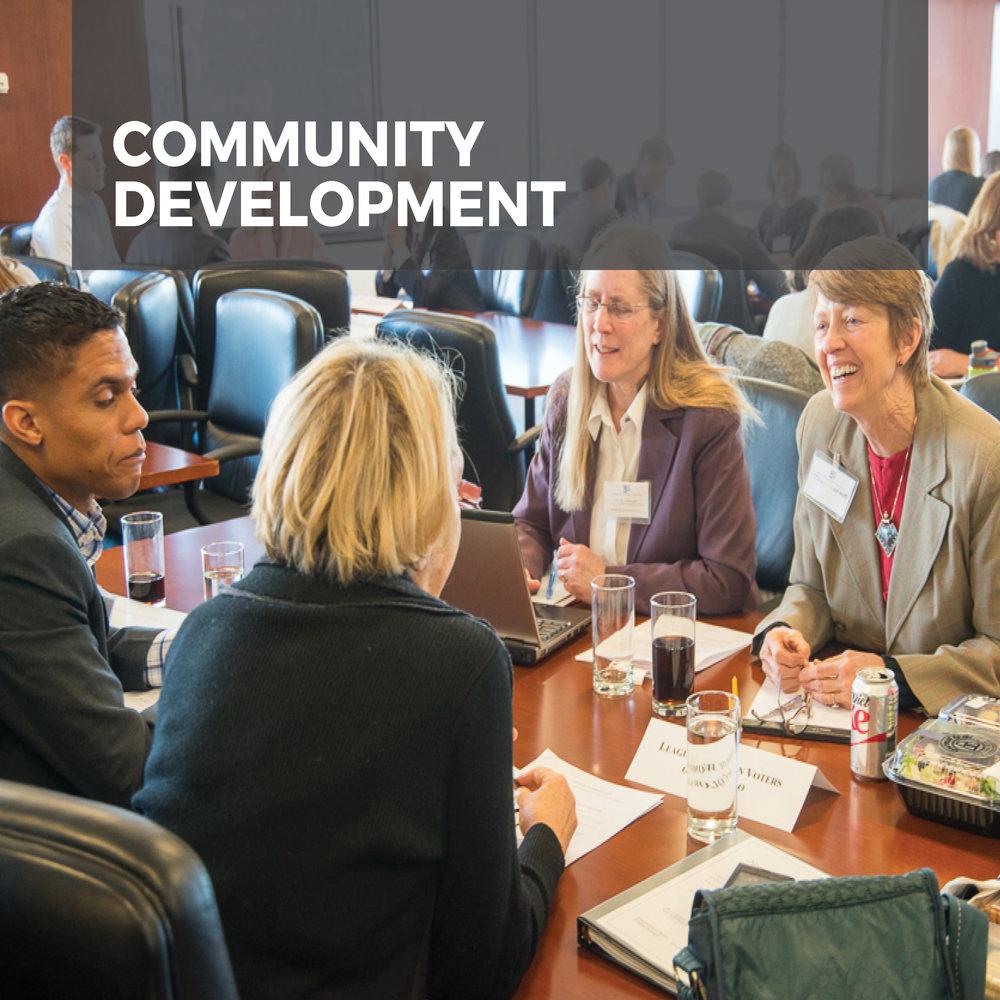 communitydevelopment2.jpg
