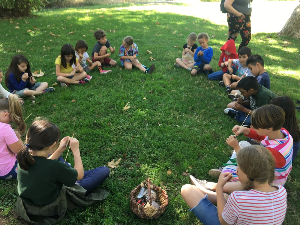 Public School Programs - We do field trips for any public, private, or charter school!