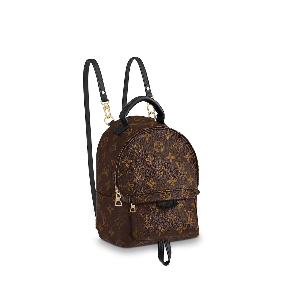 Mini Backpack - Louis Vuitton Palm Springs Mini Backpack