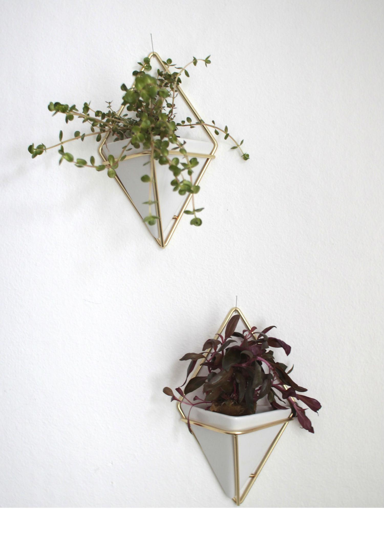 viherkasvit2-muokattu