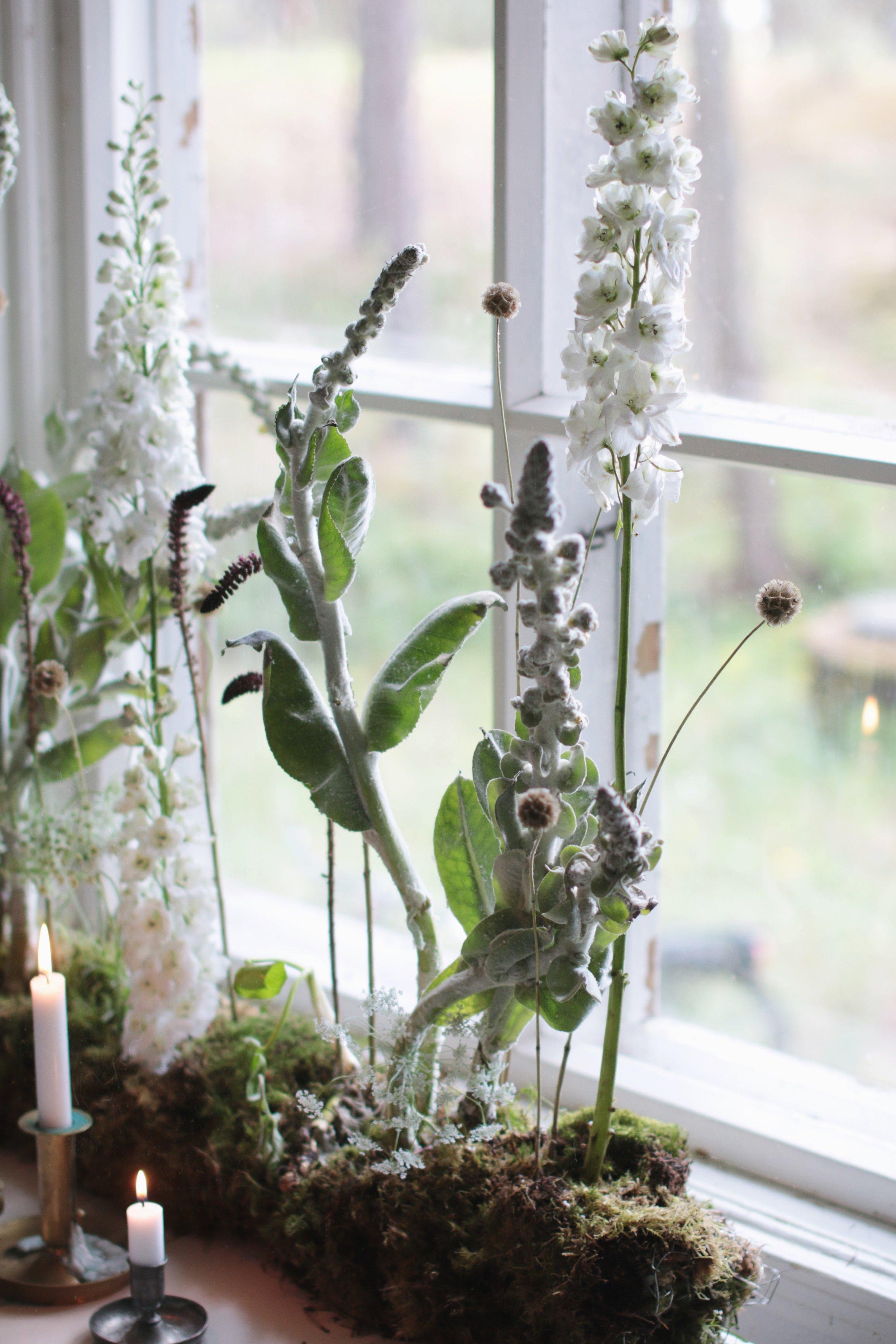vihreä valkoinen selkeä ja luonnollinen kukka-asetelma