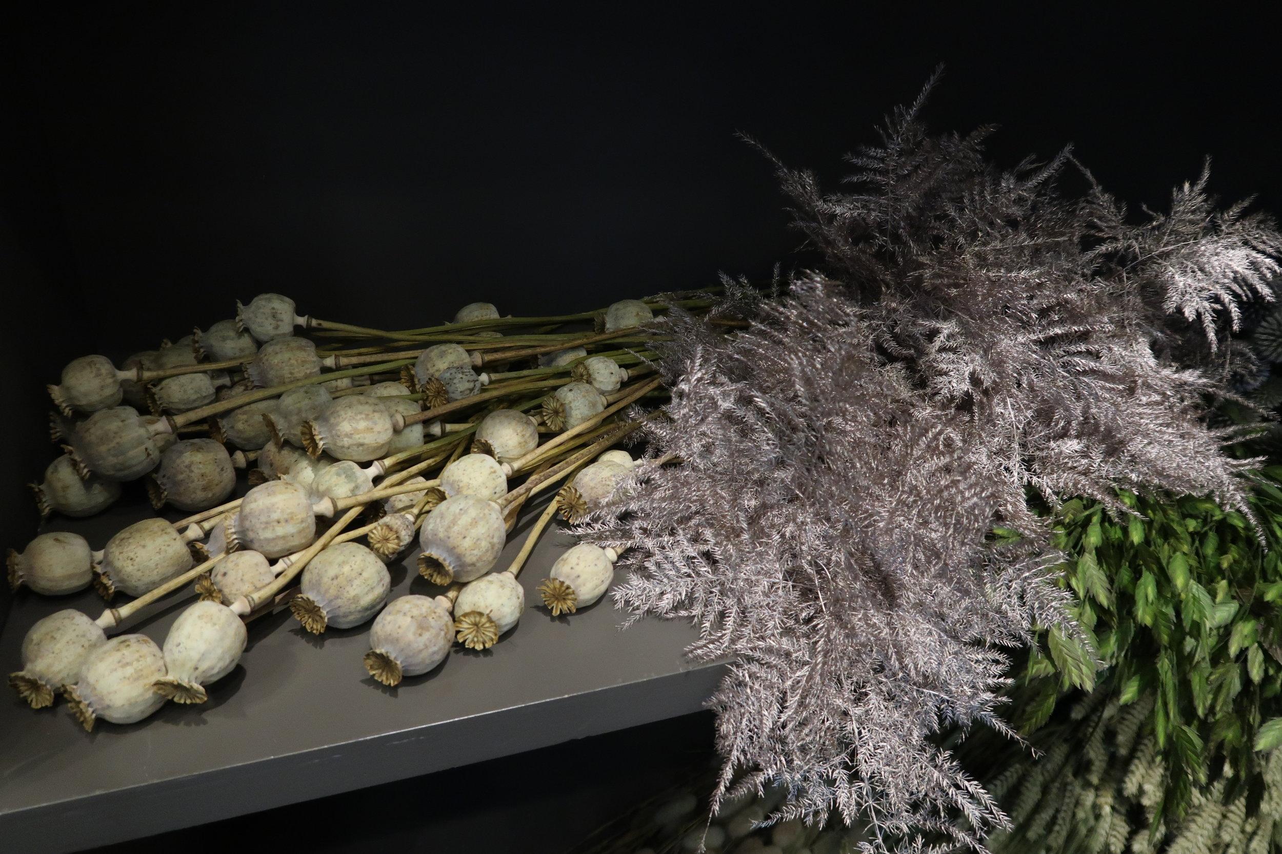 kuivuva kukkasidonta materiaali, papaver, unikko ja unelma värjätty