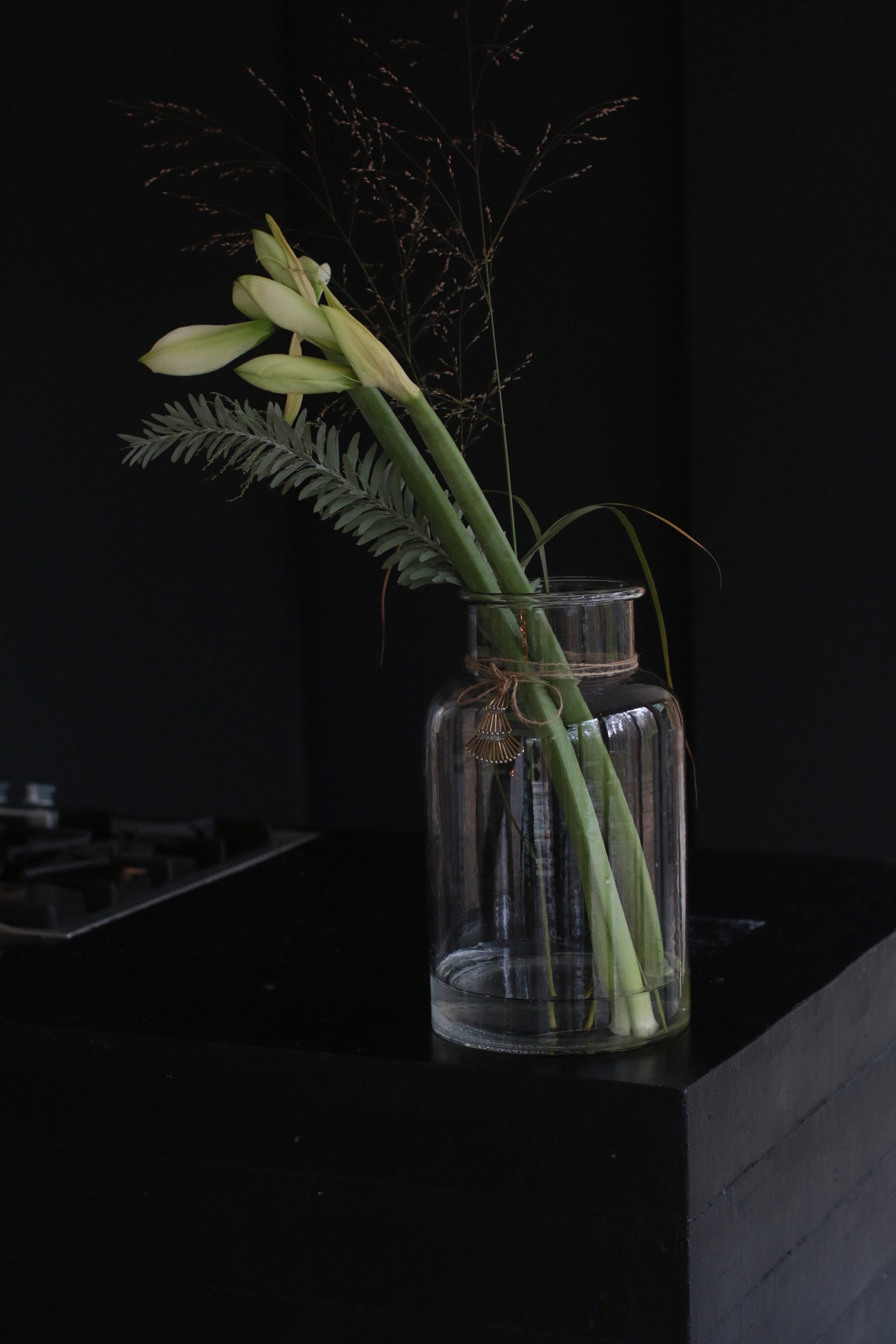 Amaryllis leikkokukkana, selkeä amaryllis kukka-asetelma,