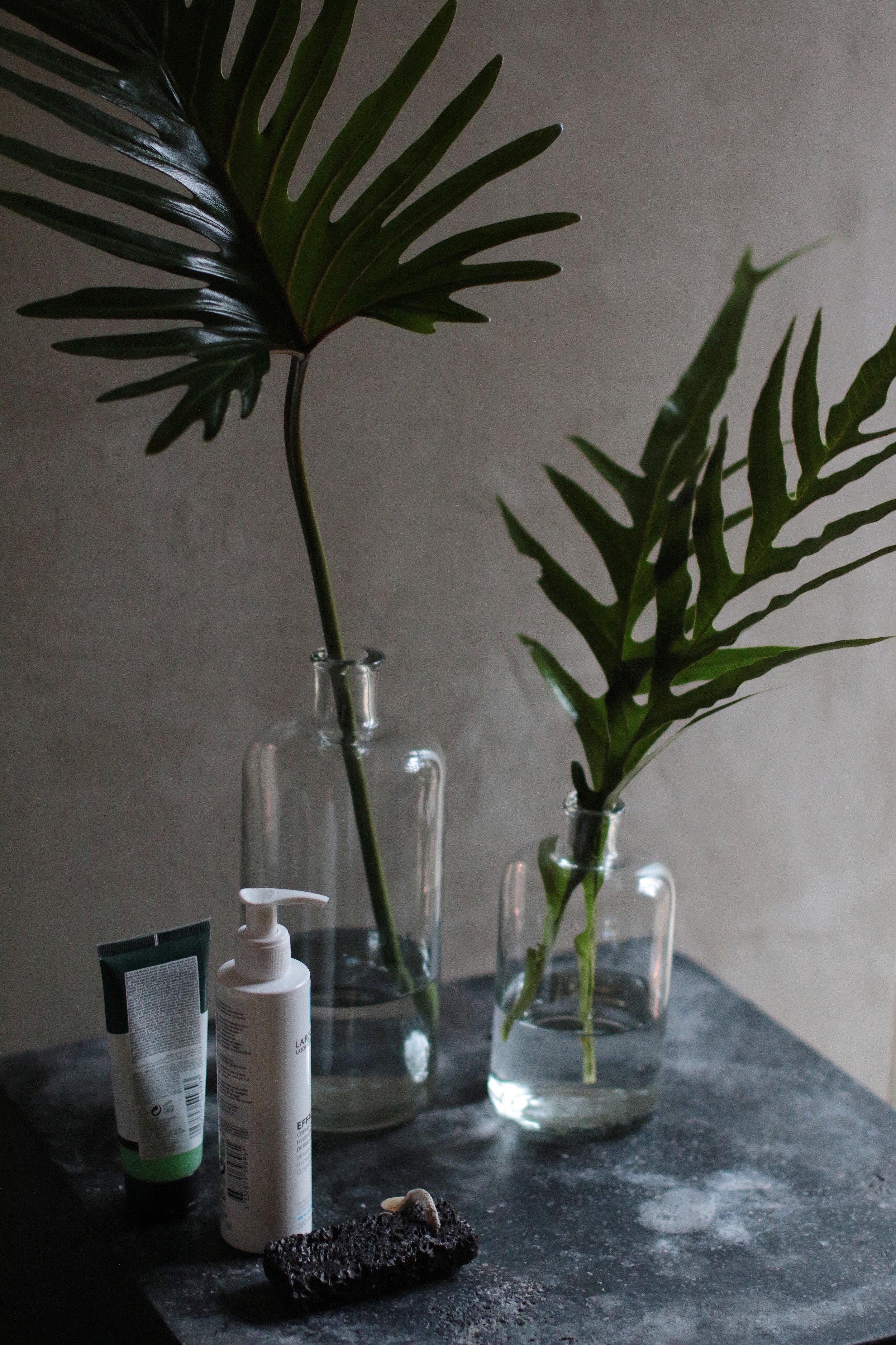 lasiastiat, selkeät lehdet, ideoita kylpyhuoneeseen, inspiraatio pimeisiin tioihin, huonekasvien vihreyttä